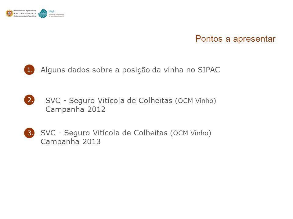 Alguns dados sobre a posição da vinha no SIPAC 1.2.