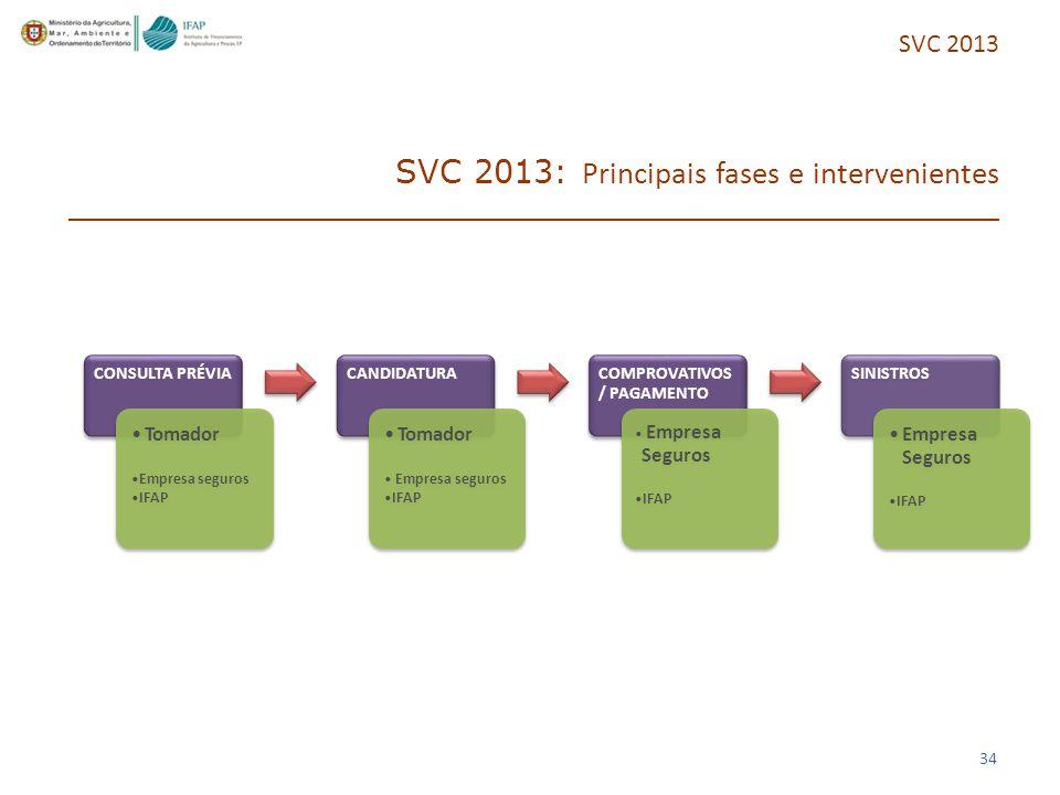34 SVC 2013: Principais fases e intervenientes CONSULTA PRÉVIA Tomador Empresa seguros IFAP CANDIDATURA Tomador Empresa seguros IFAP COMPROVATIVOS / PAGAMENTO Empresa Seguros IFAP SINISTROS Empresa Seguros IFAP SVC 2013