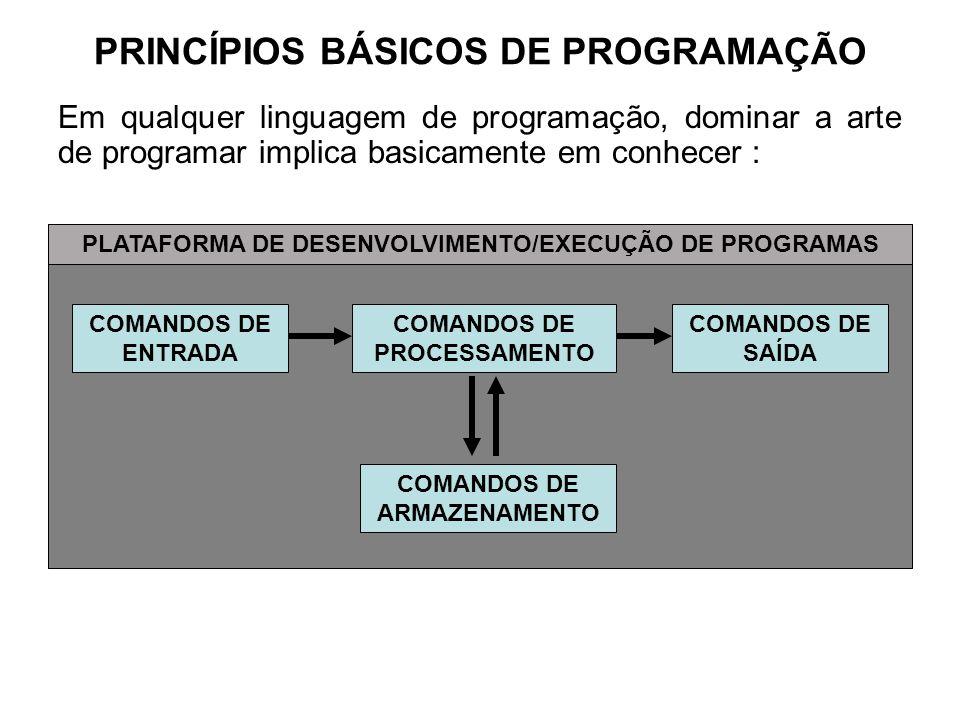 PRINCÍPIOS BÁSICOS DE PROGRAMAÇÃO Em qualquer linguagem de programação, dominar a arte de programar implica basicamente em conhecer : COMANDOS DE ENTR