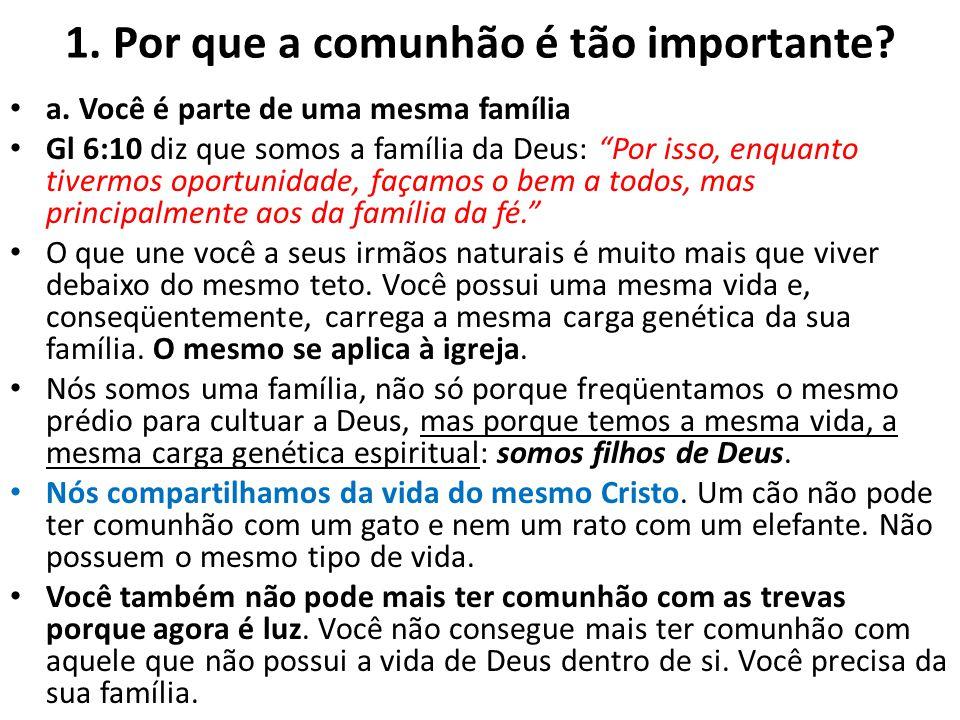 1. Por que a comunhão é tão importante? a. Você é parte de uma mesma família Gl 6:10 diz que somos a família da Deus: Por isso, enquanto tivermos opor