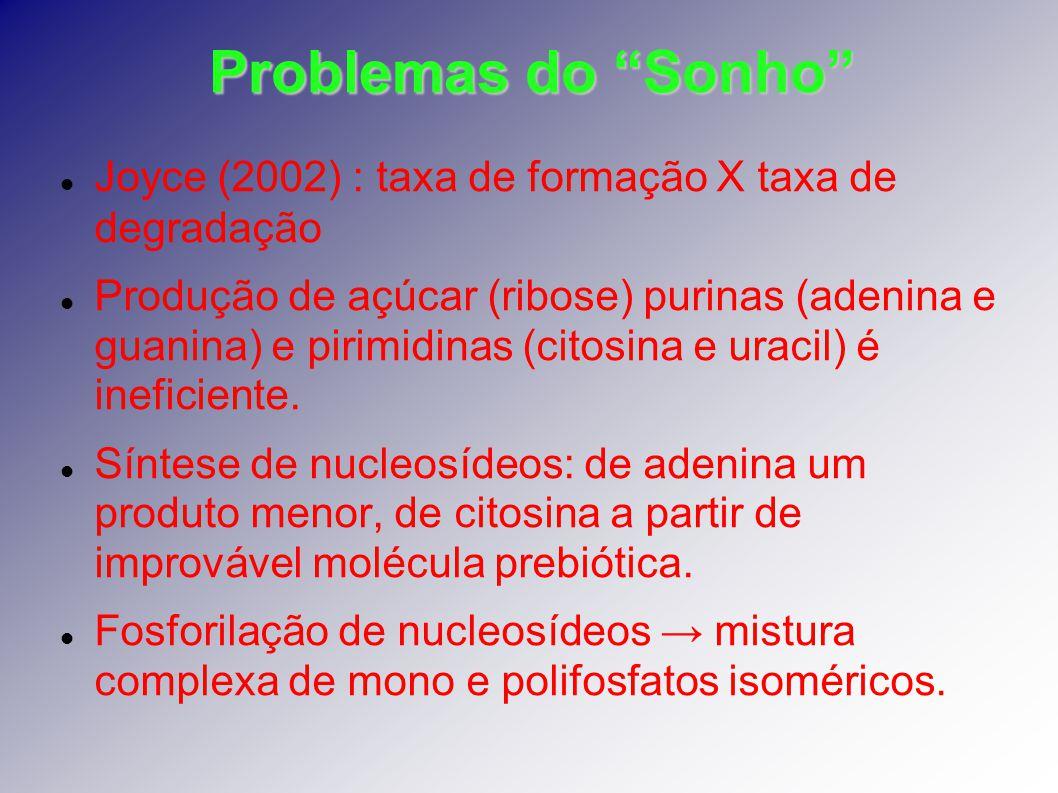Problemas do Sonho Joyce (2002) : taxa de formação X taxa de degradação Produção de açúcar (ribose) purinas (adenina e guanina) e pirimidinas (citosin
