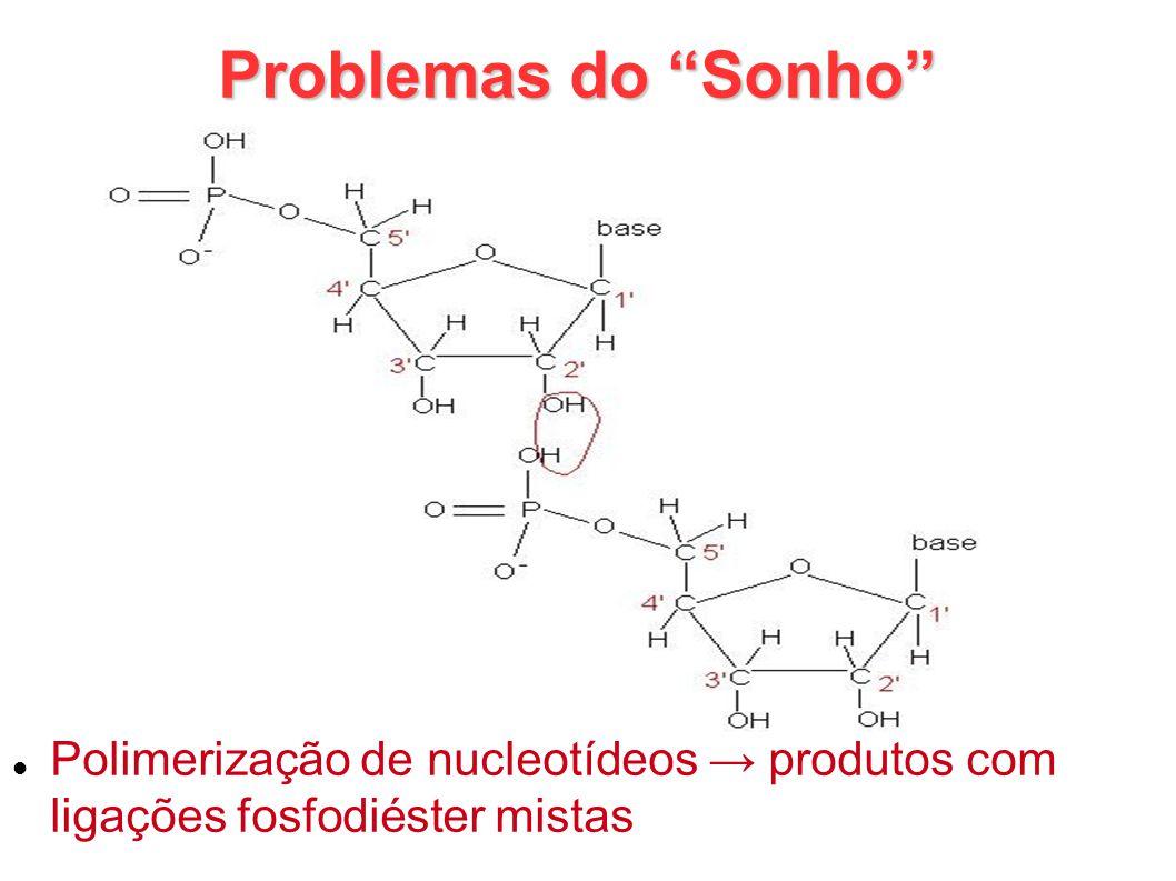 Problemas do Sonho Polimerização de nucleotídeos produtos com ligações fosfodiéster mistas