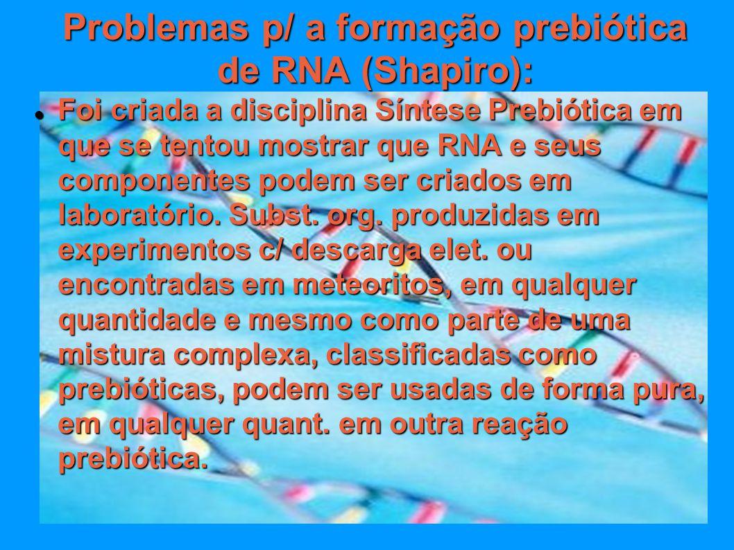 Problemas p/ a formação prebiótica de RNA (Shapiro): Foi criada a disciplina Síntese Prebiótica em que se tentou mostrar que RNA e seus componentes po