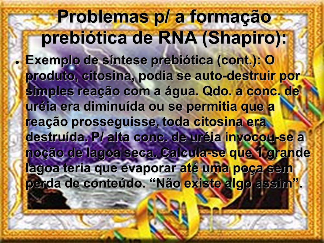 Problemas p/ a formação prebiótica de RNA (Shapiro): Exemplo de síntese prebiótica (cont.): O produto, citosina, podia se auto-destruir por simples re