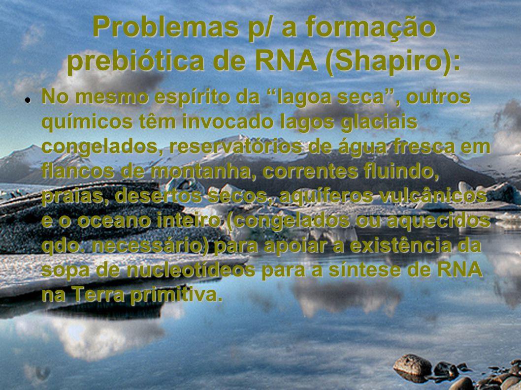 Problemas p/ a formação prebiótica de RNA (Shapiro): No mesmo espírito da lagoa seca, outros químicos têm invocado lagos glaciais congelados, reservat