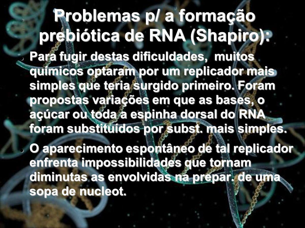Problemas p/ a formação prebiótica de RNA (Shapiro): Para fugir destas dificuldades, muitos químicos optaram por um replicador mais simples que teria