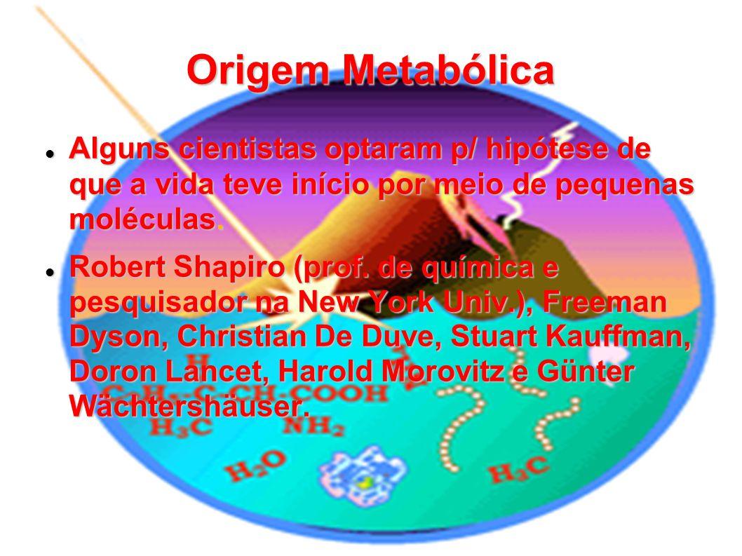 Origem Metabólica Alguns cientistas optaram p/ hipótese de que a vida teve início por meio de pequenas moléculas. Alguns cientistas optaram p/ hipótes