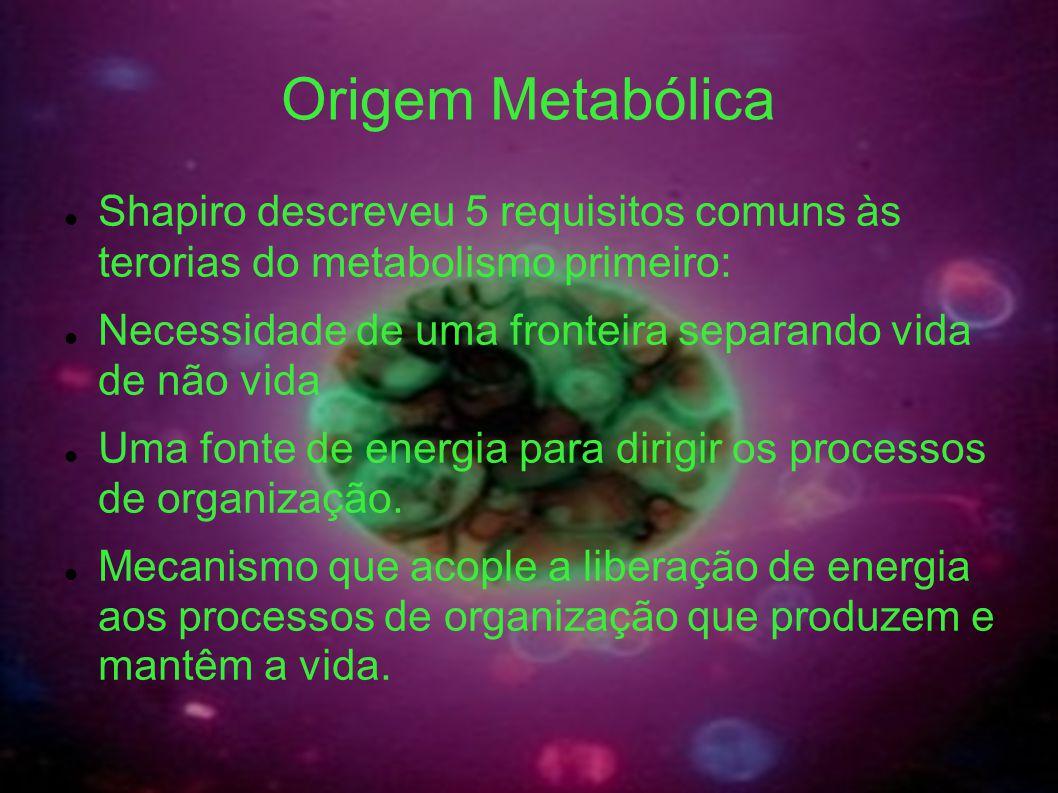 Origem Metabólica Shapiro descreveu 5 requisitos comuns às terorias do metabolismo primeiro: Necessidade de uma fronteira separando vida de não vida U