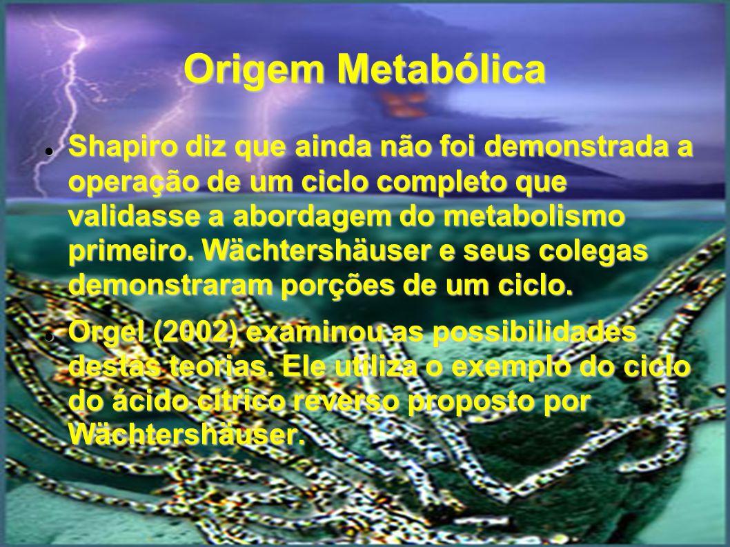 Origem Metabólica Shapiro diz que ainda não foi demonstrada a operação de um ciclo completo que validasse a abordagem do metabolismo primeiro. Wächter