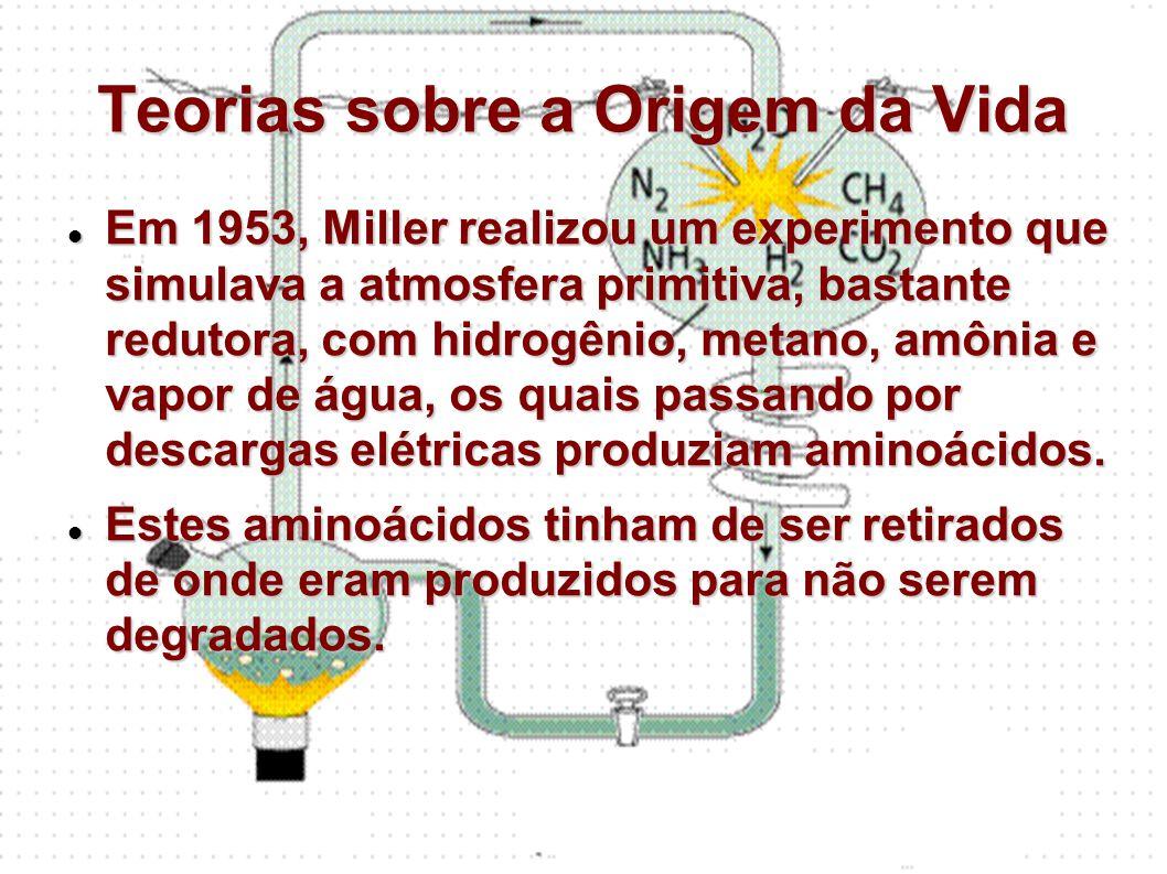 Teorias sobre a Origem da Vida Em 1953, Miller realizou um experimento que simulava a atmosfera primitiva, bastante redutora, com hidrogênio, metano,