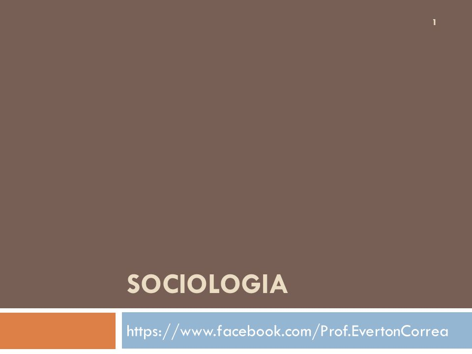SOCIOLOGIA https://www.facebook.com/Prof.EvertonCorrea 1