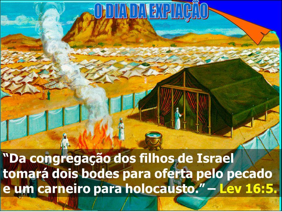 Da congregação dos filhos de Israel tomará dois bodes para oferta pelo pecado e um carneiro para holocausto.