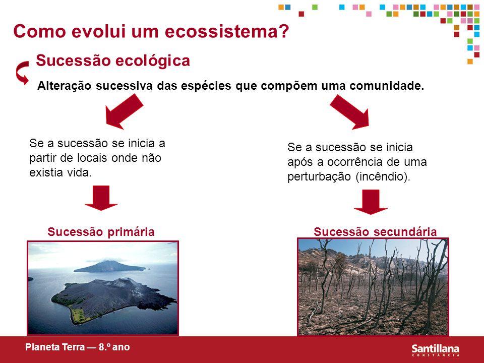 Como evolui um ecossistema.