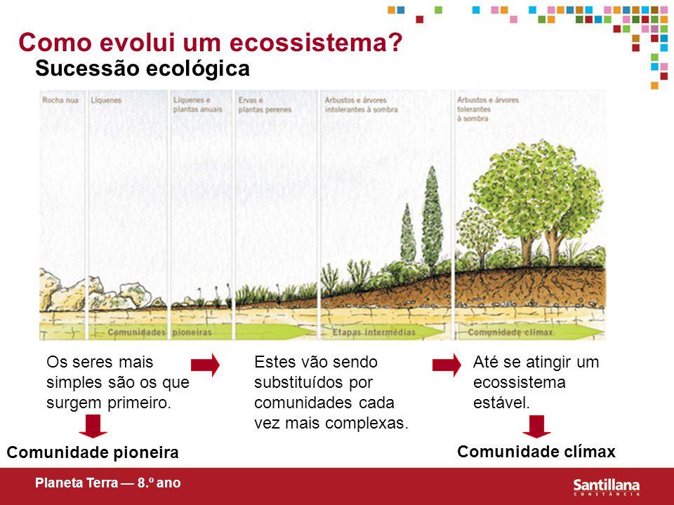 Como evolui um ecossistema.Sucessão ecológica Os seres mais simples são os que surgem primeiro.