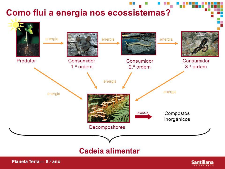 energia ProdutorConsumidor 1.ª ordem Consumidor 2.ª ordem Decompositores Consumidor 3.ª ordem Como flui a energia nos ecossistemas.
