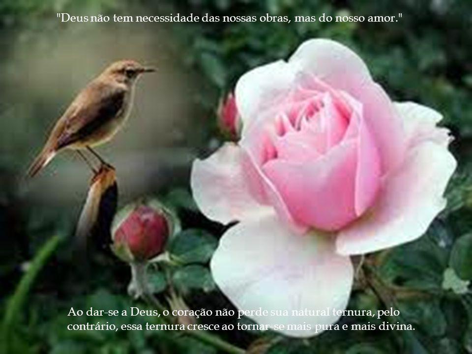 Deus não tem necessidade das nossas obras, mas do nosso amor. Ao dar-se a Deus, o coração não perde sua natural ternura, pelo contrário, essa ternura cresce ao tornar-se mais pura e mais divina.