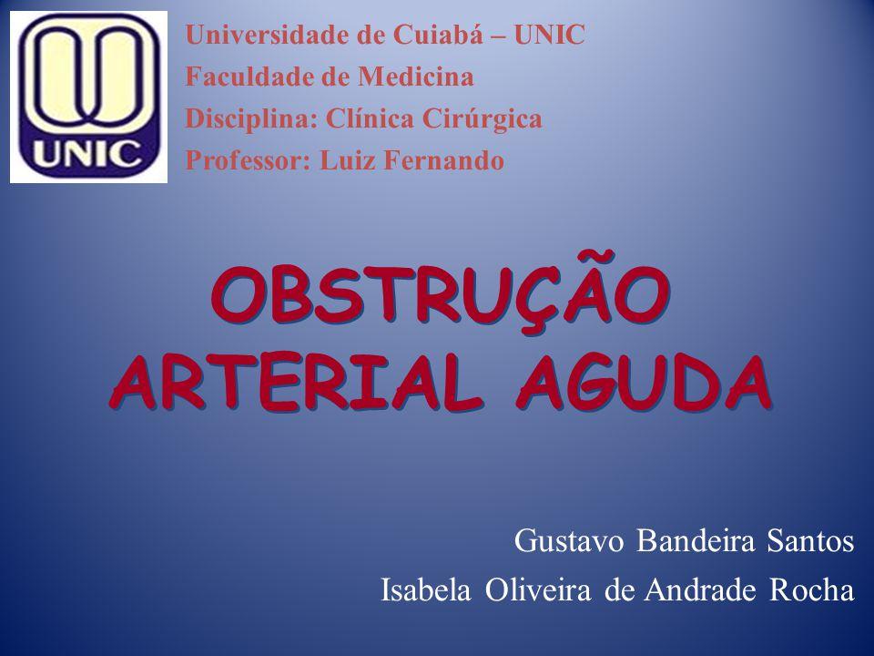 OBSTRUÇÃO ARTERIAL AGUDA Gustavo Bandeira Santos Isabela Oliveira de Andrade Rocha Universidade de Cuiabá – UNIC Faculdade de Medicina Disciplina: Clí