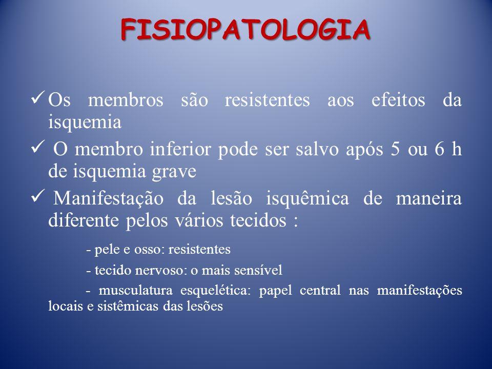 FISIOPATOLOGIA Os membros são resistentes aos efeitos da isquemia O membro inferior pode ser salvo após 5 ou 6 h de isquemia grave Manifestação da les