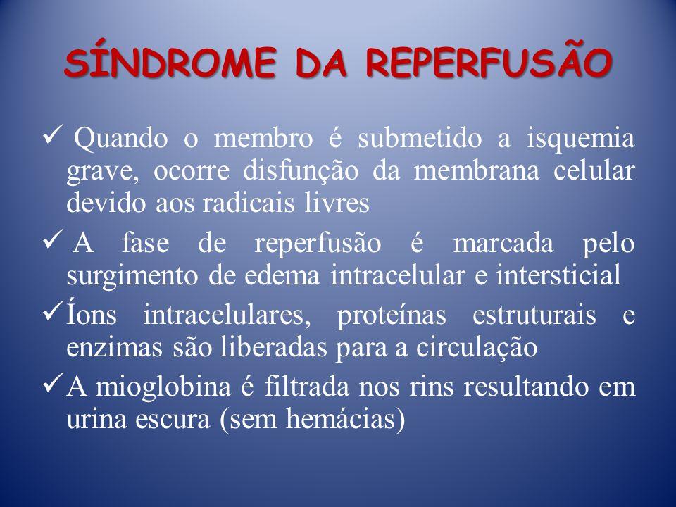 SÍNDROME DA REPERFUSÃO Quando o membro é submetido a isquemia grave, ocorre disfunção da membrana celular devido aos radicais livres A fase de reperfu