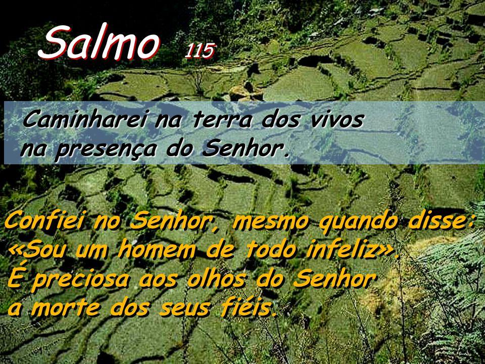 Salmo 115 Caminharei na terra dos vivos na presença do Senhor.