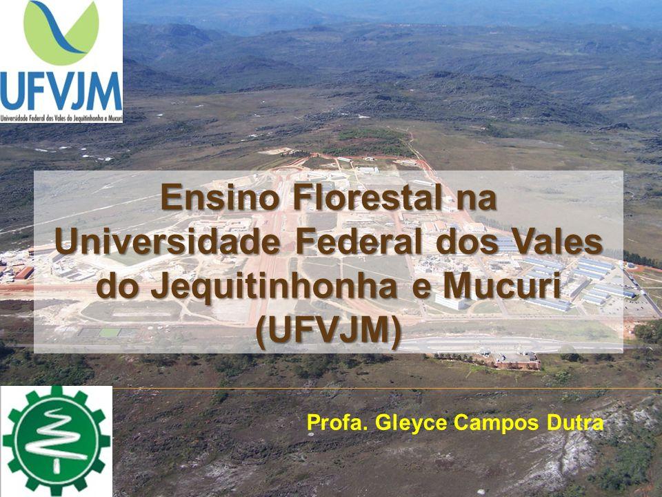 Ensino Florestal na Universidade Federal dos Vales do Jequitinhonha e Mucuri (UFVJM) Profa. Gleyce Campos Dutra