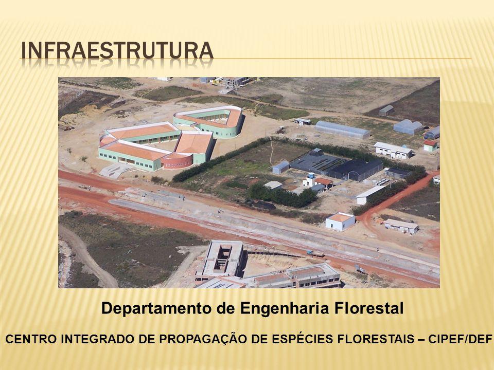 CENTRO INTEGRADO DE PROPAGAÇÃO DE ESPÉCIES FLORESTAIS – CIPEF/DEF