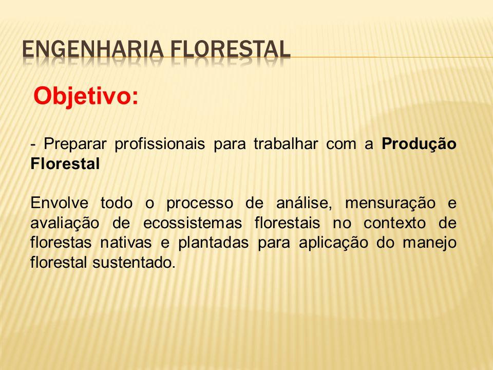 - Preparar profissionais para trabalhar com a Produção Florestal Envolve todo o processo de análise, mensuração e avaliação de ecossistemas florestais