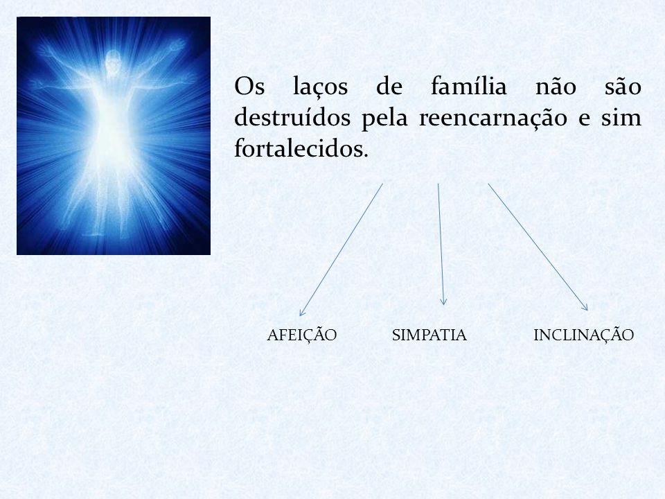 Os laços de família não são destruídos pela reencarnação e sim fortalecidos. AFEIÇÃO SIMPATIA INCLINAÇÃO