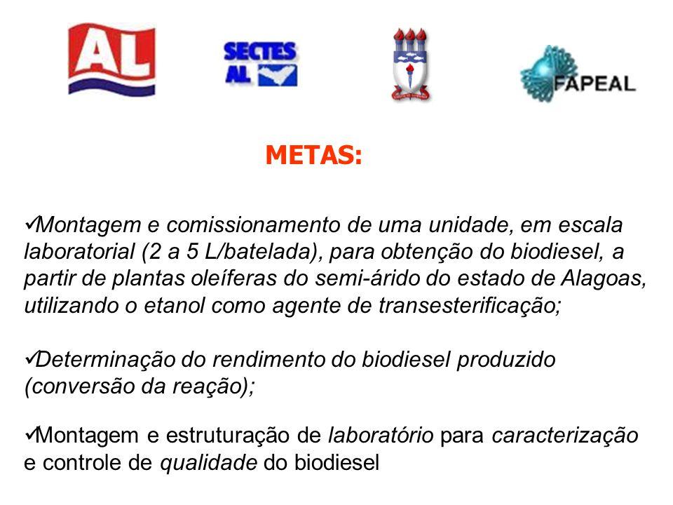 METAS: Montagem e comissionamento de uma unidade, em escala laboratorial (2 a 5 L/batelada), para obtenção do biodiesel, a partir de plantas oleíferas