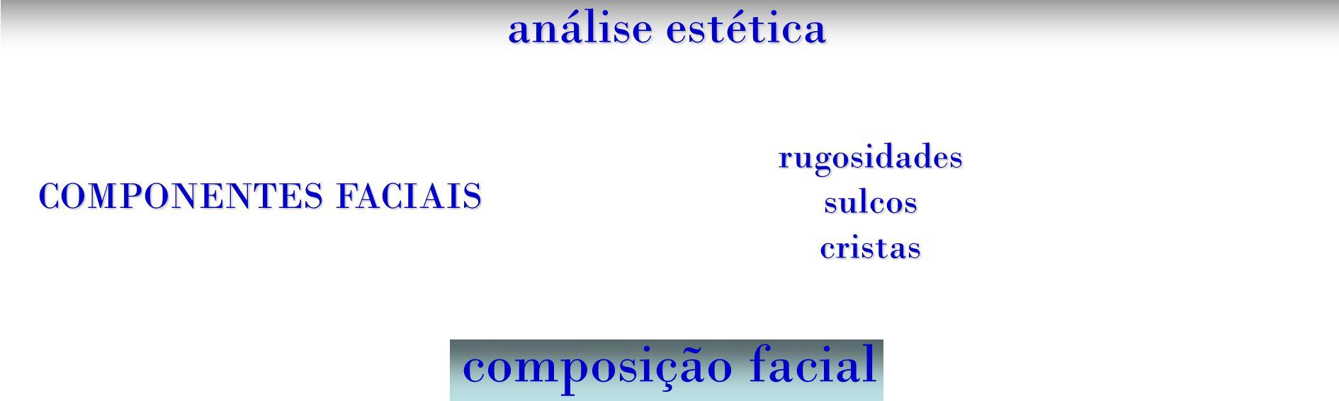 análise estética composição facial COMPONENTES FACIAIS rugosidadessulcoscristas
