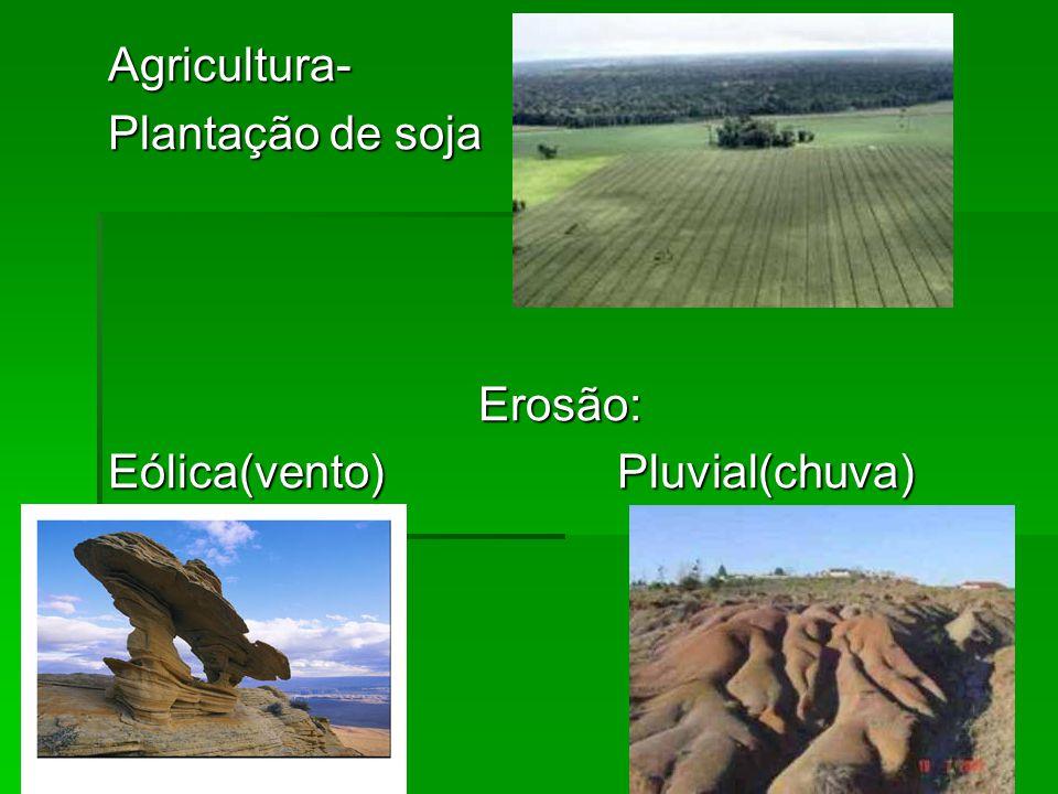 Agricultura- Plantação de soja Erosão: Eólica(vento) Pluvial(chuva)