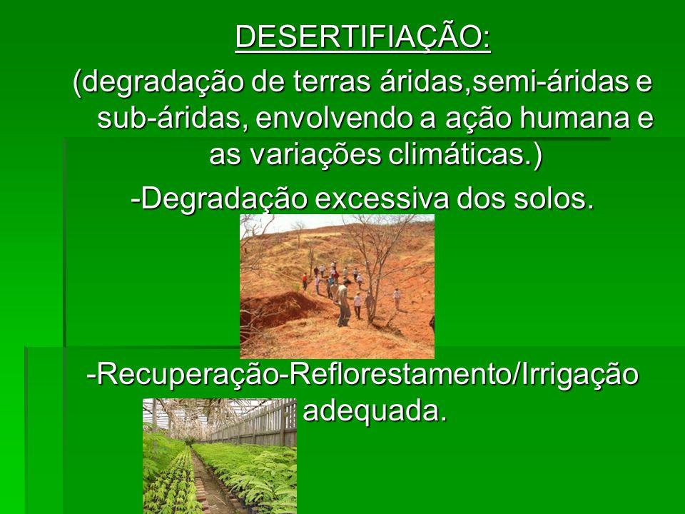 DESERTIFIAÇÃO: (degradação de terras áridas,semi-áridas e sub-áridas, envolvendo a ação humana e as variações climáticas.) -Degradação excessiva dos s