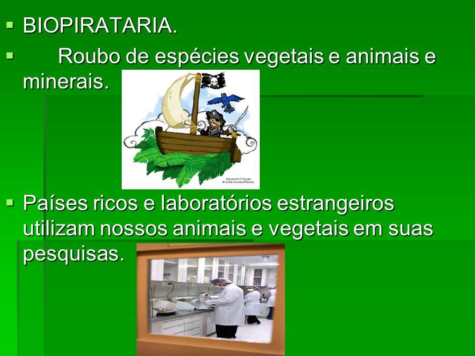 BIOPIRATARIA. BIOPIRATARIA. Roubo de espécies vegetais e animais e minerais. Roubo de espécies vegetais e animais e minerais. Países ricos e laboratór