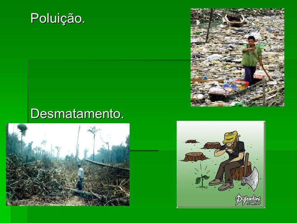 Poluição.Desmatamento.