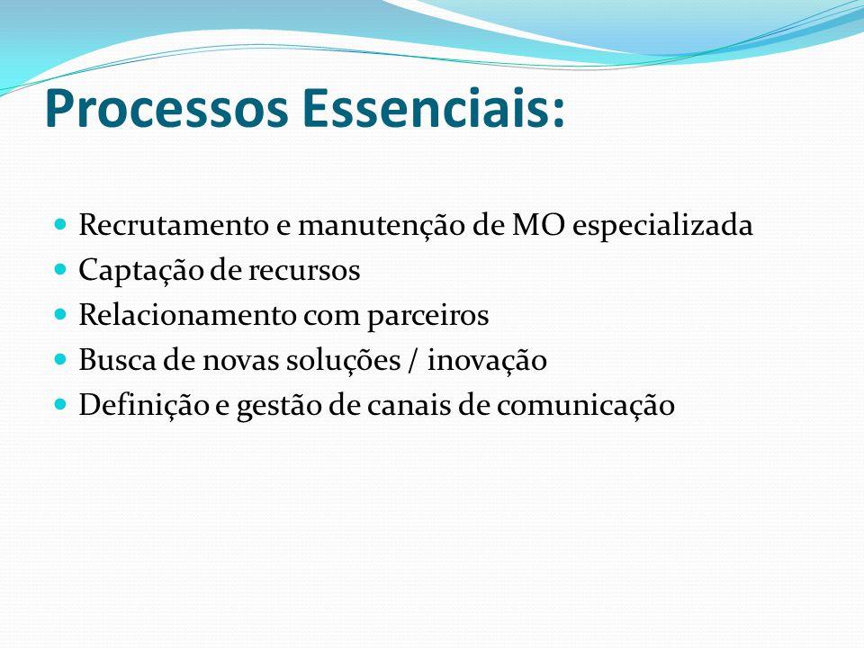 Processos Essenciais: Recrutamento e manutenção de MO especializada Captação de recursos Relacionamento com parceiros Busca de novas soluções / inovaç