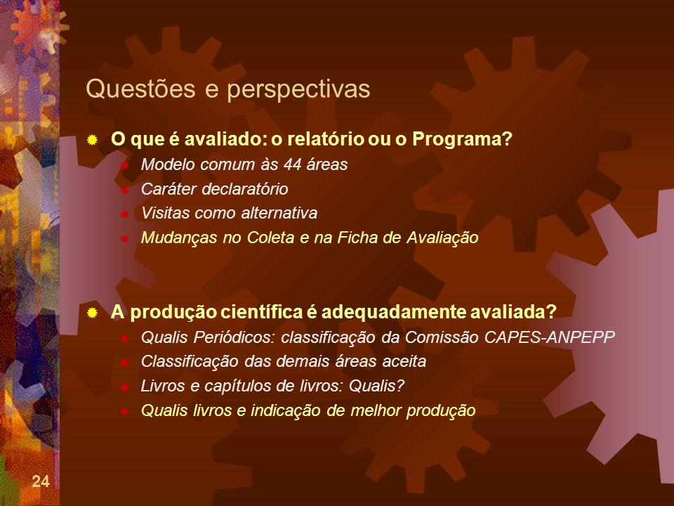 24 Questões e perspectivas O que é avaliado: o relatório ou o Programa.