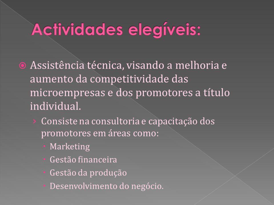 Assistência técnica, visando a melhoria e aumento da competitividade das microempresas e dos promotores a título individual.