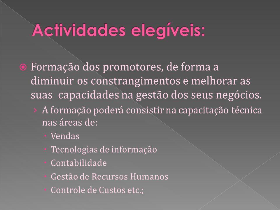 Formação dos promotores, de forma a diminuir os constrangimentos e melhorar as suas capacidades na gestão dos seus negócios.