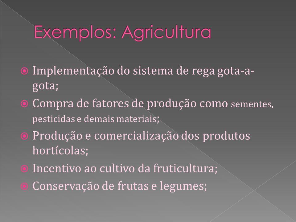 Implementação do sistema de rega gota-a- gota; Compra de fatores de produção como sementes, pesticidas e demais materiais ; Produção e comercialização dos produtos hortícolas; Incentivo ao cultivo da fruticultura; Conservação de frutas e legumes;