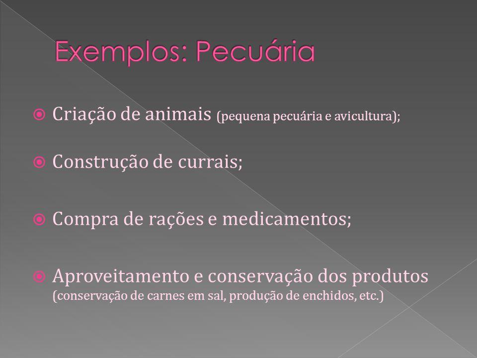 Criação de animais (pequena pecuária e avicultura); Construção de currais; Compra de rações e medicamentos; Aproveitamento e conservação dos produtos (conservação de carnes em sal, produção de enchidos, etc.)