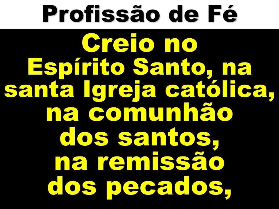 Creio no Espírito Santo, na santa Igreja católica, na comunhão dos santos, na remissão dos pecados, Profissão de Fé