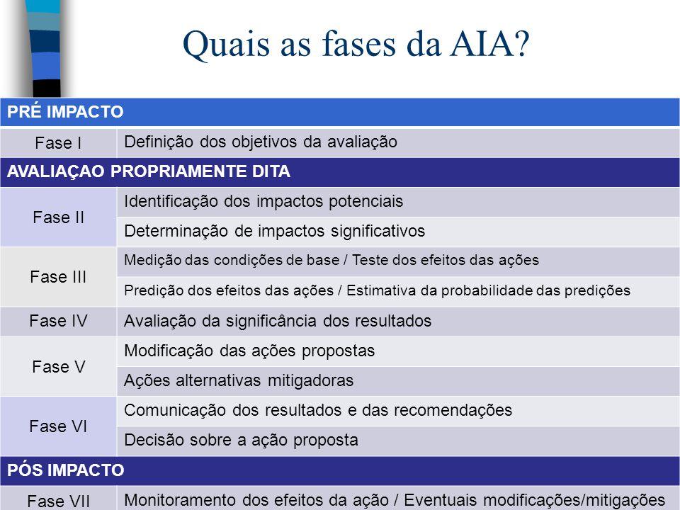 PRÉ IMPACTO Fase I Definição dos objetivos da avaliação AVALIAÇAO PROPRIAMENTE DITA Fase II Identificação dos impactos potenciais Determinação de impa