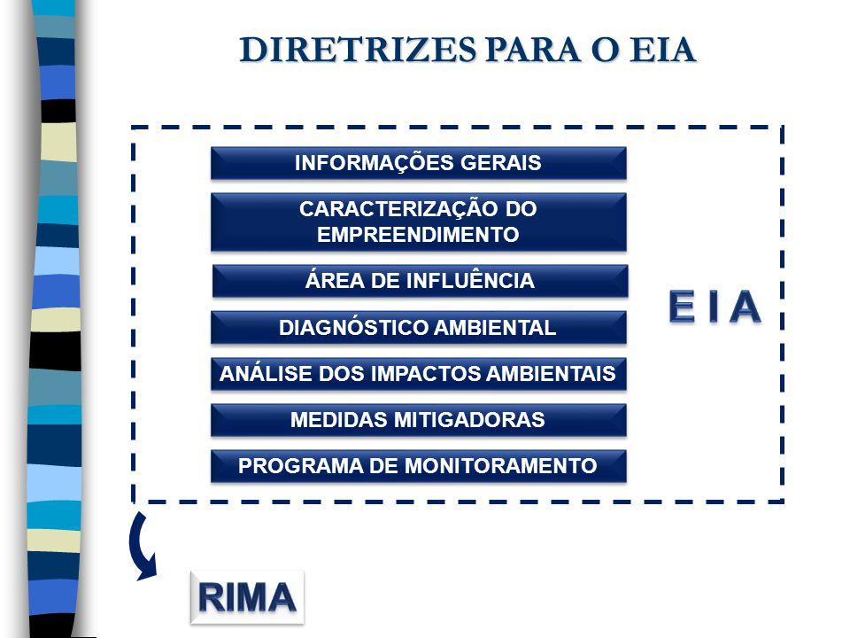 INFORMAÇÕES GERAIS ANÁLISE DOS IMPACTOS AMBIENTAIS CARACTERIZAÇÃO DO EMPREENDIMENTO DIAGNÓSTICO AMBIENTAL MEDIDAS MITIGADORAS PROGRAMA DE MONITORAMENT