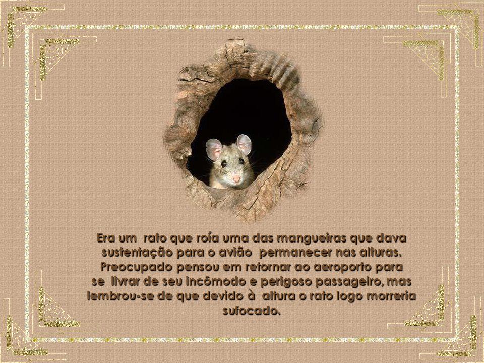 O Rato Era um rato que roía uma das mangueiras que dava sustentação para o avião permanecer nas alturas.