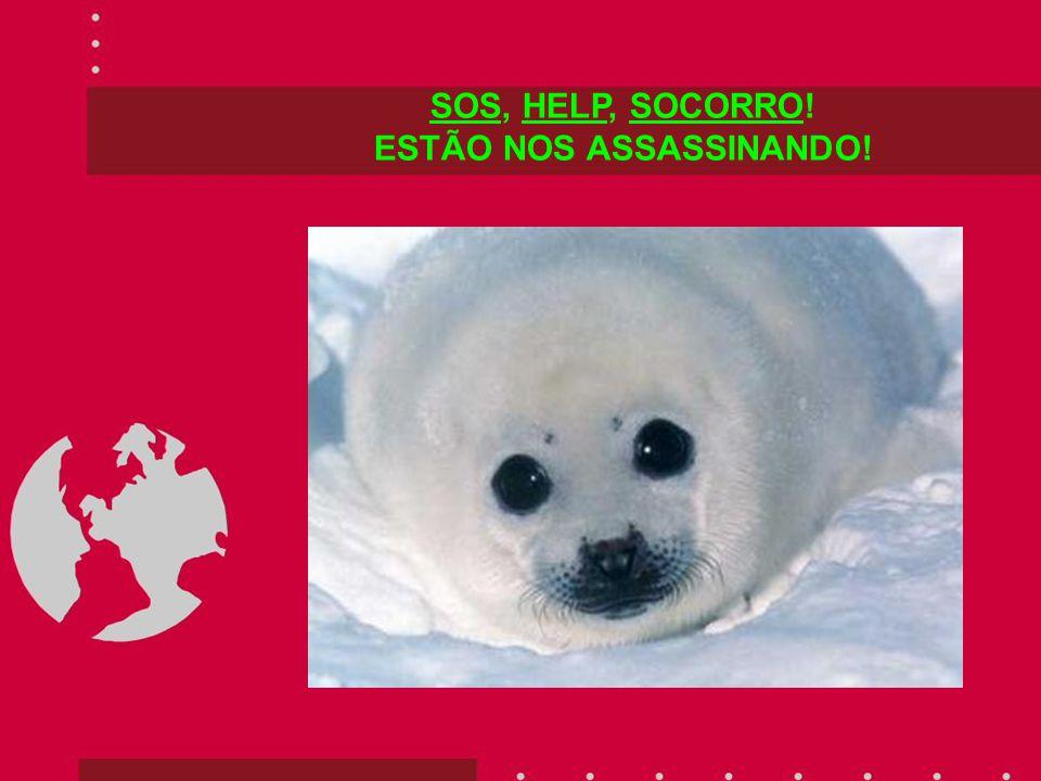 SOS, HELP, SOCORRO! ESTÃO NOS ASSASSINANDO!