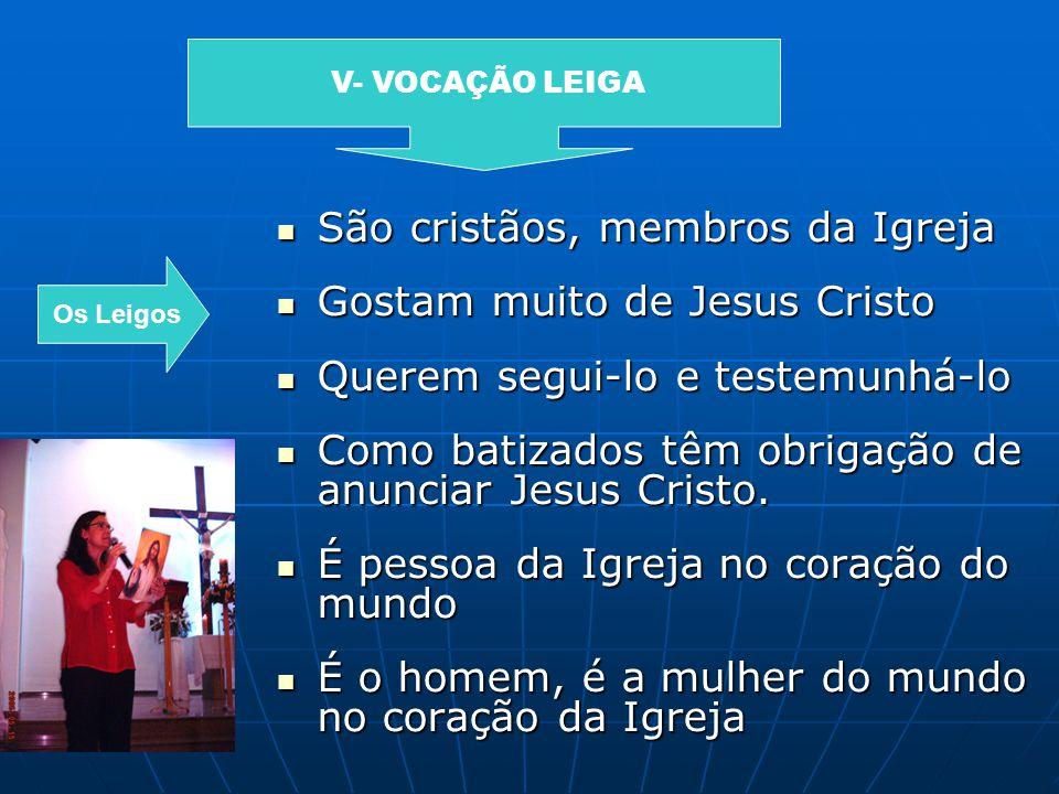 São cristãos, membros da Igreja São cristãos, membros da Igreja Gostam muito de Jesus Cristo Gostam muito de Jesus Cristo Querem segui-lo e testemunhá