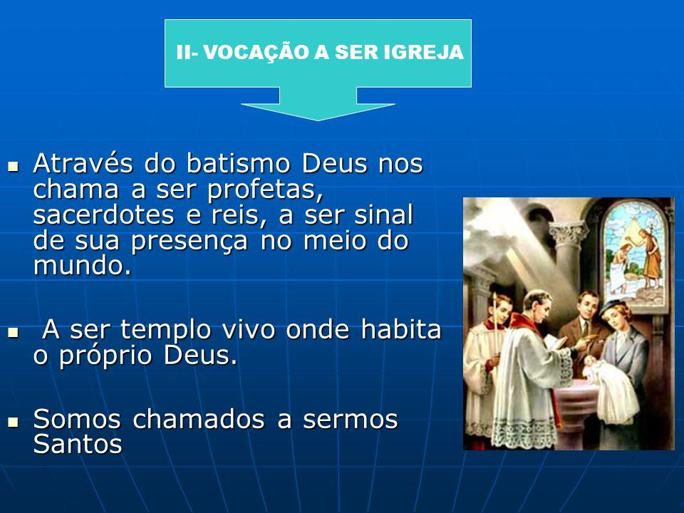 Através do batismo Deus nos chama a ser profetas, sacerdotes e reis, a ser sinal de sua presença no meio do mundo. Através do batismo Deus nos chama a