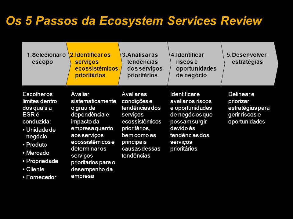 5.Desenvolver estratégias 4.Identificar riscos e oportunidades de negócio 3.Analisar as tendências dos serviços prioritários 2.Identificar os serviços