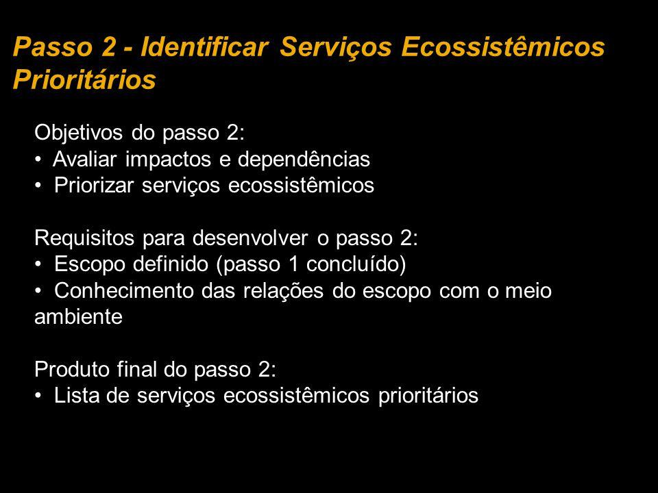 Objetivos do passo 2: Avaliar impactos e dependências Priorizar serviços ecossistêmicos Requisitos para desenvolver o passo 2: Escopo definido (passo
