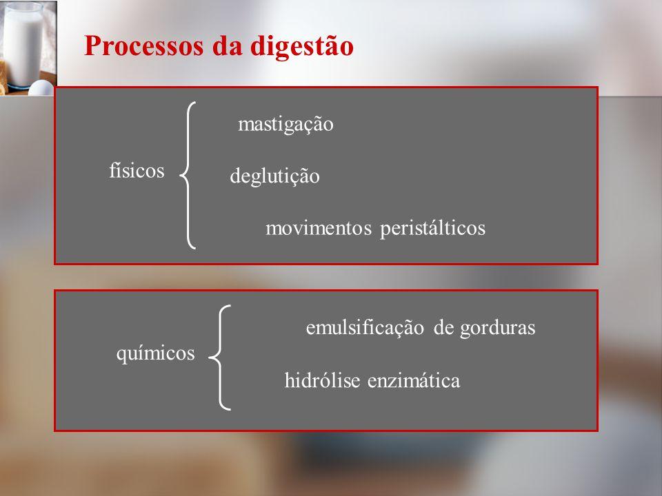 Processos da digestão físicos mastigação deglutição movimentos peristálticos químicos emulsificação de gorduras hidrólise enzimática